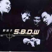 SBDW原版伴奏